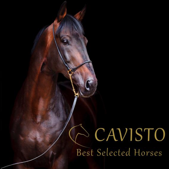 CAVISTO Crowdinvesting bei CONDA