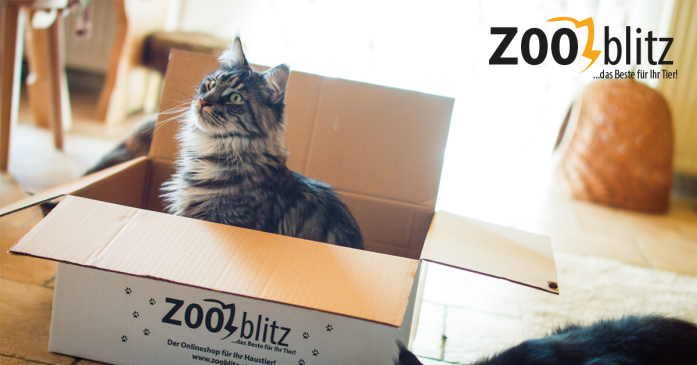 Zooblitz Crowdinvesting pusht Umsatz