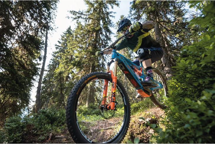 NOX Cycles - Hybrid Enduro - CONDA