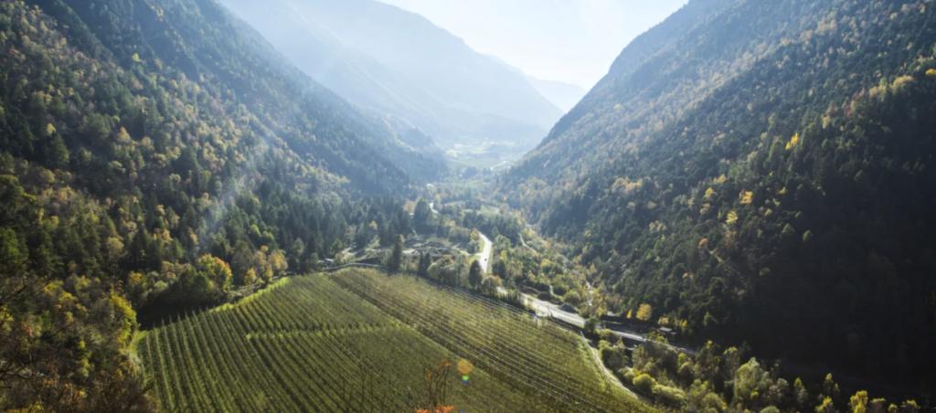 Wonderfuldrinks Teaser Südtirol Apfelernte Südtirol - CONDA